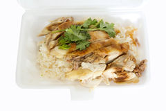 Rice steamed with chicken soup on foam box Royalty Free Stock Image