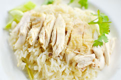 Rice steamed with chicken soup Stock Images