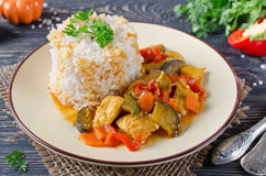 Rice and stew with chicken and vegetables Stock Photography