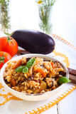 Rice with stewed vegetables Royalty Free Stock Photography