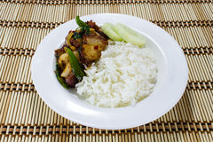 Rice and Stir-fried crispy pork Royalty Free Stock Photography