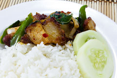 Rice and Stir-fried crispy pork Stock Photography