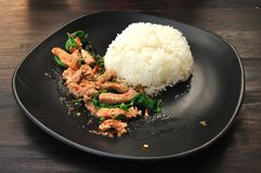 Rice with stir fried hot and spicy pork with basil Stock Photography