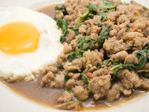 Rice stir fried pork and basil with egg. Royalty Free Stock Images