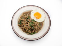 Rice stir fried pork and basil with egg. Stock Image