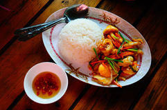 Rice and Stir Fried squid with salted egg York.  royalty free stock photos