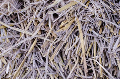 Rice straw background Stock Photos