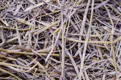 Rice straw background Royalty Free Stock Photos