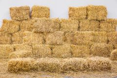 Rice straw bales Royalty Free Stock Photo