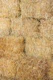Rice straw bales. Stacks of rice straw bales background royalty free stock photo