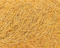 Rice Straw. After Harvest Season Stock Photography