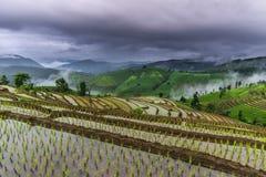 Rice taras i chmurny Zdjęcie Royalty Free