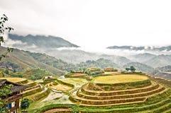 Rice taras Longsheng w Chiny zdjęcia stock