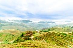 Rice tarasu pola longesheng w Chiny zdjęcie stock