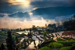 Rice tarasy i dyfrakci światło Zdjęcie Royalty Free
