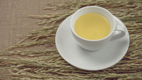 Rice tea cup. Royalty Free Stock Photography