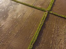 Rice Terrace Aerial Shot. Image of beautiful terrace rice field.  stock images