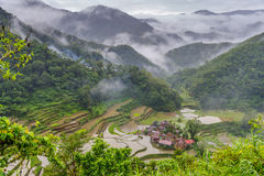 Rice terrace in banaue. Philippines Royalty Free Stock Image