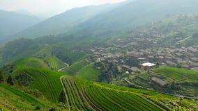Rice terrace fields Stock Image