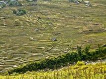 Rice terrace fields Stock Photo