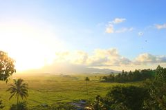 Rice terrace view. Sunset in minahasa highland with rice terrace scene Royalty Free Stock Photos