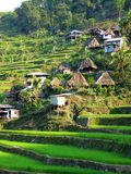 Rice Terrace Village Stock Photos