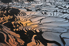 Rice terrace in Yuan Yang, China Royalty Free Stock Photos