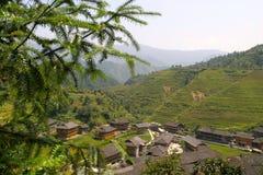 Rice terraced in Northern Vietnam Stock Image