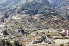 Rice terraces around Sapa Royalty Free Stock Photos