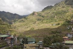 Rice Terraces in Banaue Philippines Royalty Free Stock Photography