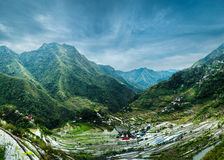 Rice terraces. Banaue, Philippines Royalty Free Stock Image