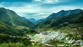 Rice terraces. Banaue, Philippines Stock Images