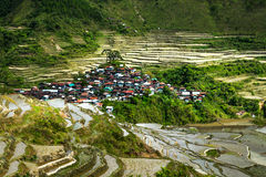 Rice terraces. Banaue, Philippines Royalty Free Stock Photography