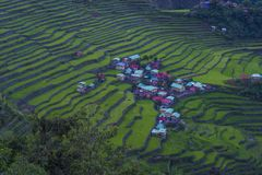 Rice terraces in Banaue the Philippines royalty free stock photos