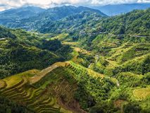 Rice terraces at Banaue View Point. On the island of Luzon, Philippines Royalty Free Stock Photos