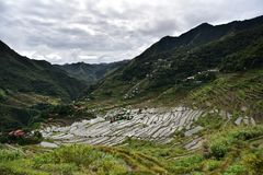 Rice Terraces - Batad, Philippines. Rice Terrace in Batad, Philippines. It is the beautiful scenery which is the UNESCO world heritage. Real life in the province Stock Photo