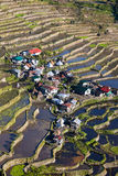 Rice terraces in Batad,  Philippines Royalty Free Stock Photography