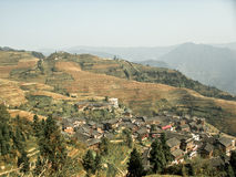 Rice terraces in china Stock Images