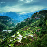 Rice terraces fields in Ifugao province. Banaue, Philippines Stock Image