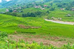 Rice terraces and fields with village in the distance. Countryside landscape Stock Photos