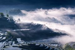 Rice terraces and fog stock photography