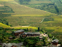 Rice terraces - Guilin - China Stock Images