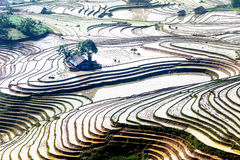 Rice terraces of the H'Mong ethnic people in Y Ty, Laocai, Vietnam at the water filling season (May 2015). The H'Mong people in Vietnam build up terraces on high Stock Photos
