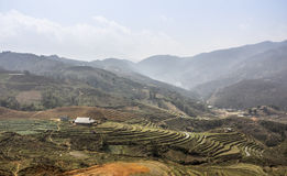 Rice terraces and houses Royalty Free Stock Images