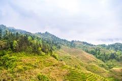Rice terraces landscape in may (village Dazhai, Guangxi province Stock Photos