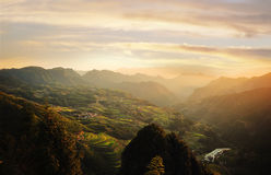 Rice terraces of lishui Stock Image