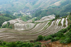 Rice terraces at Longsheng, China Stock Photo