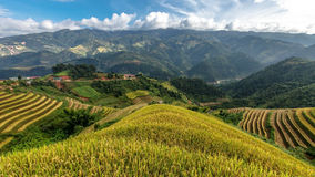 Rice terraces on the mountain Stock Image