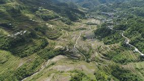 Rice terraces in the mountains. Philippines, Batad, Banaue. Aerial view of rice terraces on the slopes of the mountains, Banaue, Philippines. Rice cultivation Stock Images