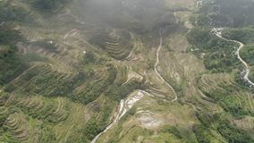 Rice terraces in the mountains. Philippines, Batad, Banaue. Aerial view of rice terraces on the slopes of the mountains, Banaue, Philippines. Rice cultivation Royalty Free Stock Image